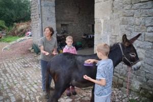 C'est le jour J : préparation et brossage de l'âne...les enfants adorent !