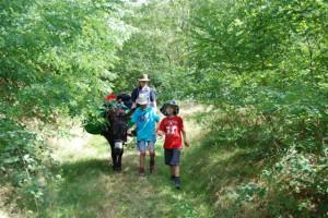 Rando âne dans le Morvan : une famille et leur compagnon de marche.