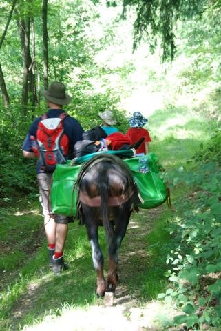 Rando âne : Une famille en marche...
