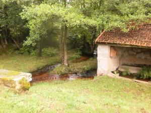 petit émissaire du Lac de Chaumeçon...et adorable petit lavoir
