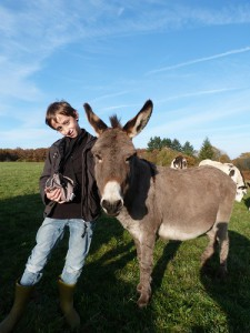 Babette, petit âne Provençal